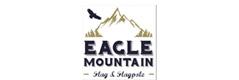 Eagle Mountian Logo